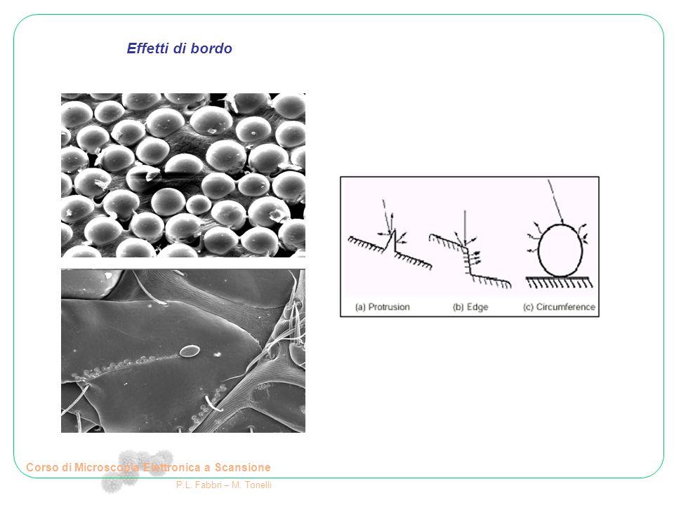 Corso di Microscopia Elettronica a Scansione P.L. Fabbri – M. Tonelli Effetti di bordo