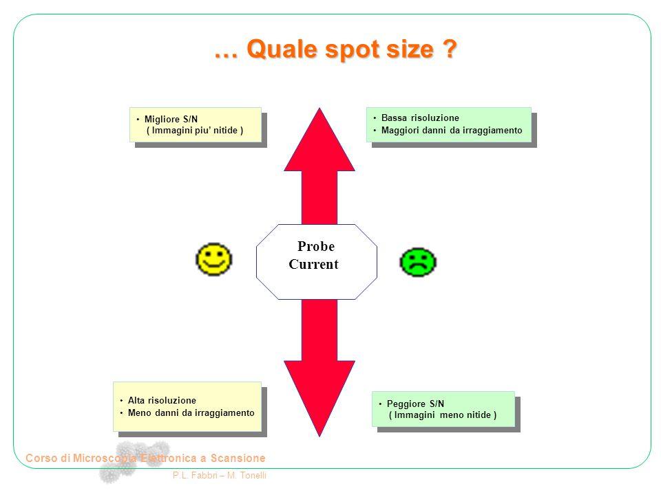 Corso di Microscopia Elettronica a Scansione P.L. Fabbri – M. Tonelli … Quale spot size ? Probe Current Migliore S/N ( Immagini piu' nitide ) Migliore