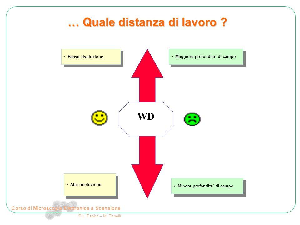 Corso di Microscopia Elettronica a Scansione P.L. Fabbri – M. Tonelli … Quale distanza di lavoro ? WD Bassa risoluzione Maggiore profondita' di campo