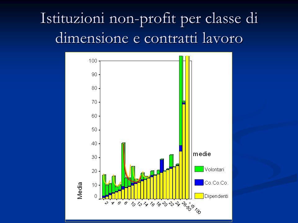 Istituzioni non-profit per classe di dimensione e contratti lavoro