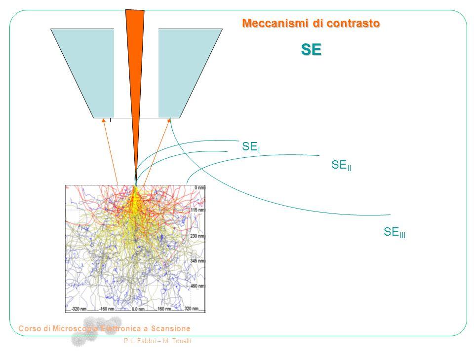 Corso di Microscopia Elettronica a Scansione P.L. Fabbri – M. Tonelli Meccanismi di contrasto SE