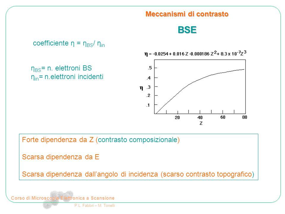 Corso di Microscopia Elettronica a Scansione P.L. Fabbri – M. Tonelli Meccanismi di contrasto BSE
