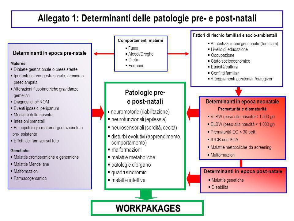 Allegato 1: Determinanti delle patologie pre- e post-natali Determinanti in epoca pre-natale Materne  Diabete gestazionale o preesistente  Ipertente