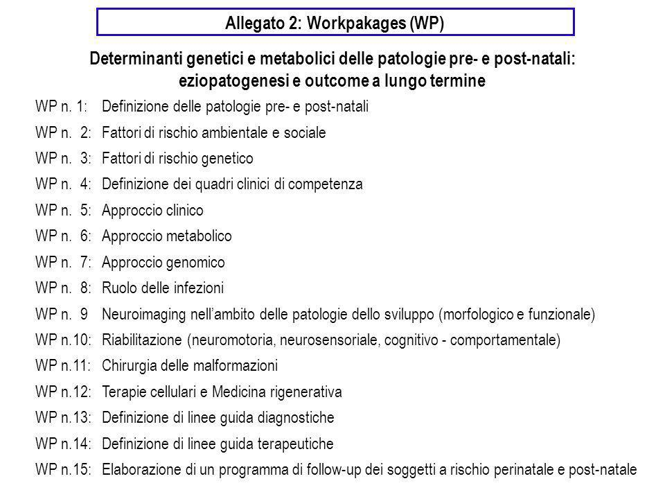 Allegato 2: Workpakages (WP) WP n. 1:Definizione delle patologie pre- e post-natali WP n. 2:Fattori di rischio ambientale e sociale WP n. 3:Fattori di