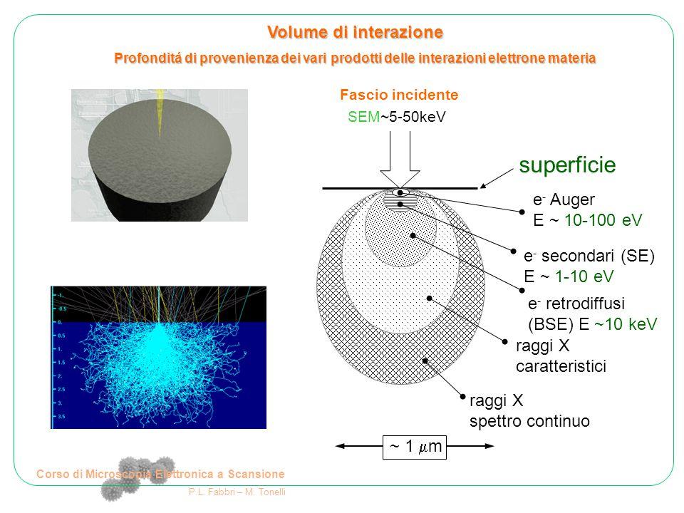 Corso di Microscopia Elettronica a Scansione P.L. Fabbri – M. Tonelli ~ 1  m e - Auger E ~ 10-100 eV e - secondari (SE) E ~ 1-10 eV e - retrodiffusi