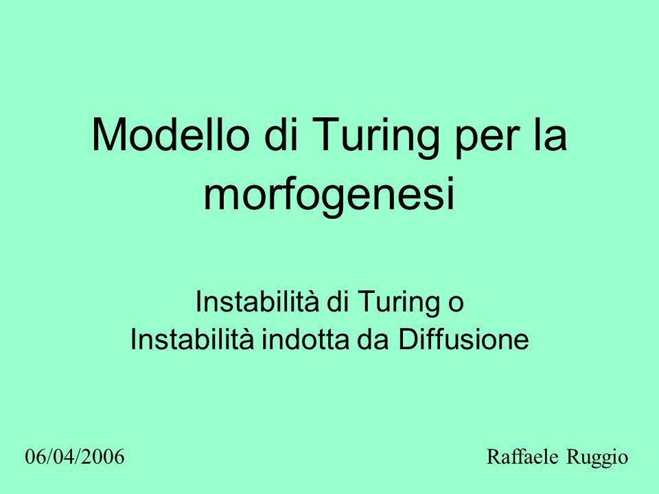 Modello di Turing per la morfogenesi Instabilità di Turing o Instabilità indotta da Diffusione Raffaele Ruggio06/04/2006