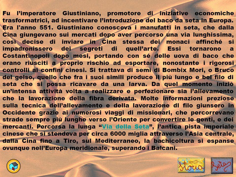 Fu l'imperatore Giustiniano, promotore di iniziative economiche trasformatrici, ad incentivare l'introduzione del baco da seta in Europa. Era l'anno 5