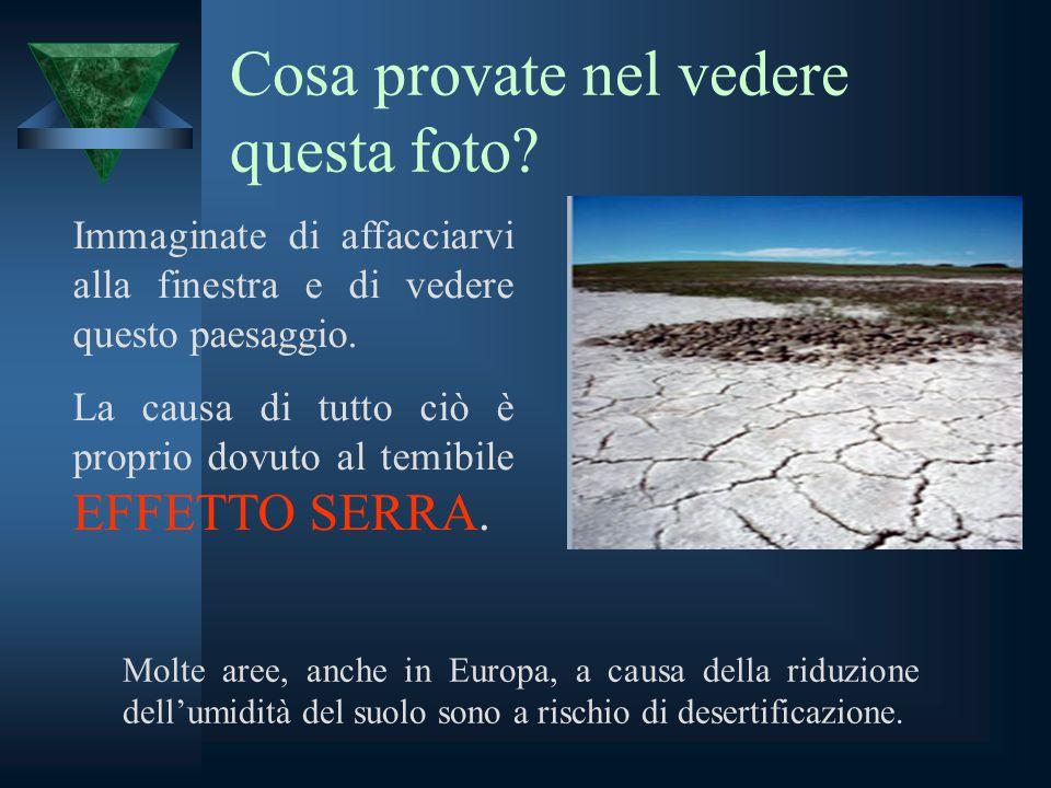 Cosa provate nel vedere questa foto? Molte aree, anche in Europa, a causa della riduzione dell'umidità del suolo sono a rischio di desertificazione. I