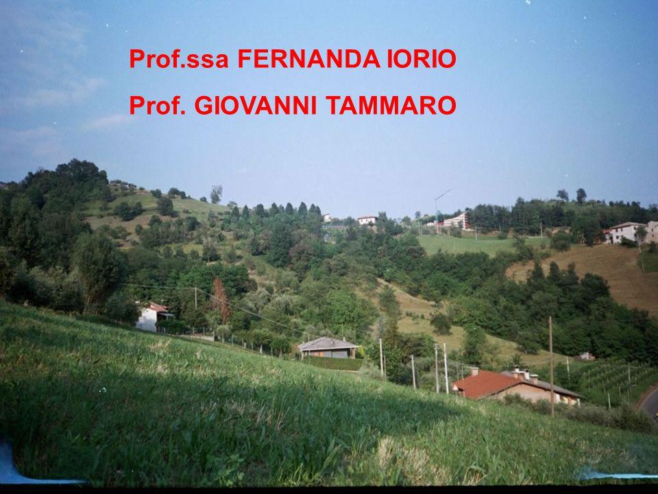 Prof.ssa FERNANDA IORIO Prof. GIOVANNI TAMMARO