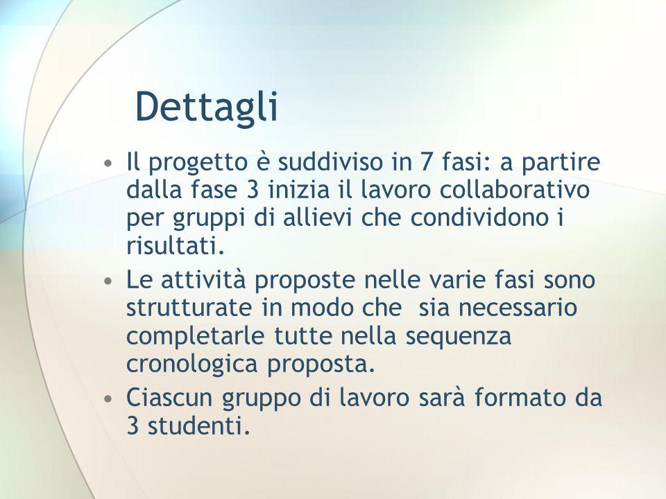 Dettagli Il progetto è suddiviso in 7 fasi: a partire dalla fase 3 inizia il lavoro collaborativo per gruppi di allievi che condividono i risultati.