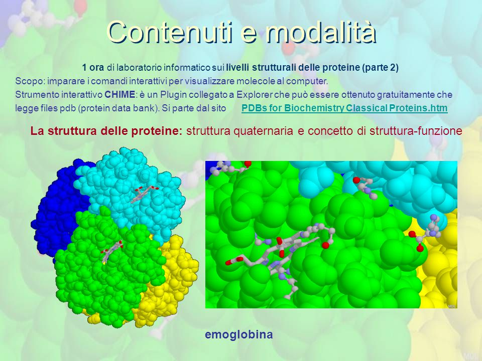 1 ora di laboratorio informatico sui livelli strutturali delle proteine (parte 2) Scopo: imparare i comandi interattivi per visualizzare molecole al computer.