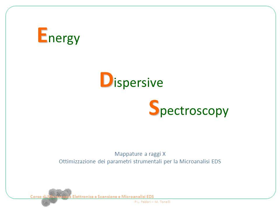 E E nergy D D ispersive S S pectroscopy Mappature a raggi X Ottimizzazione dei parametri strumentali per la Microanalisi EDS Corso di Microscopia Elettronica a Scansione e Microanalisi EDS P.L.