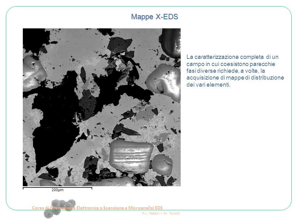 Corso di Microscopia Elettronica a Scansione e Microanalisi EDS P.L. Fabbri – M. Tonelli Mappe X-EDS La caratterizzazione completa di un campo in cui