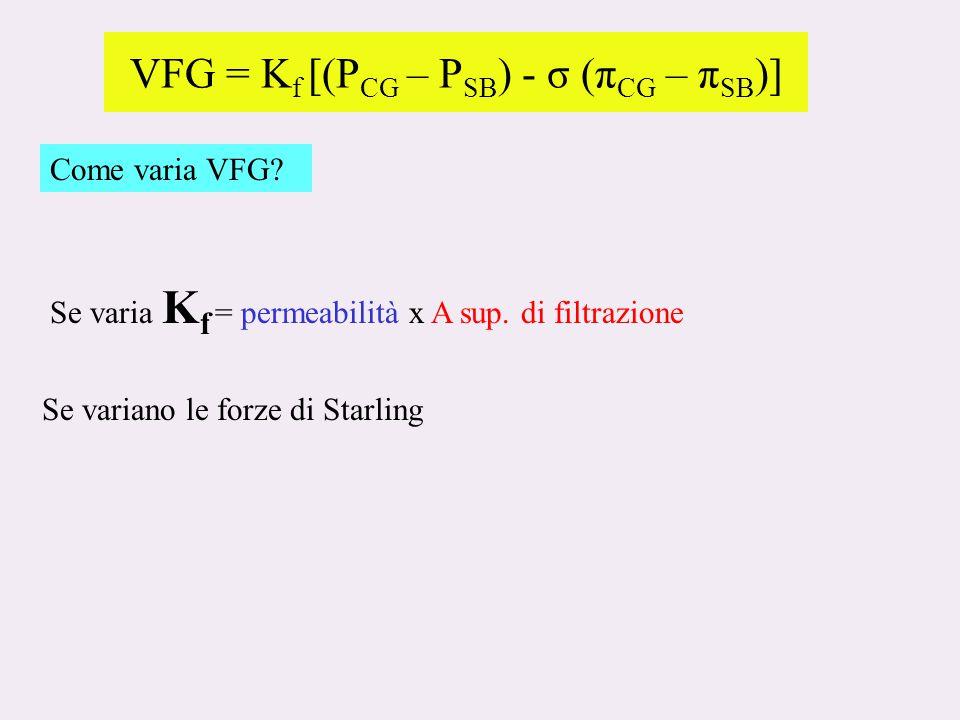 VFG = K f [(P CG – P SB ) - σ (π CG – π SB )] Come varia VFG.