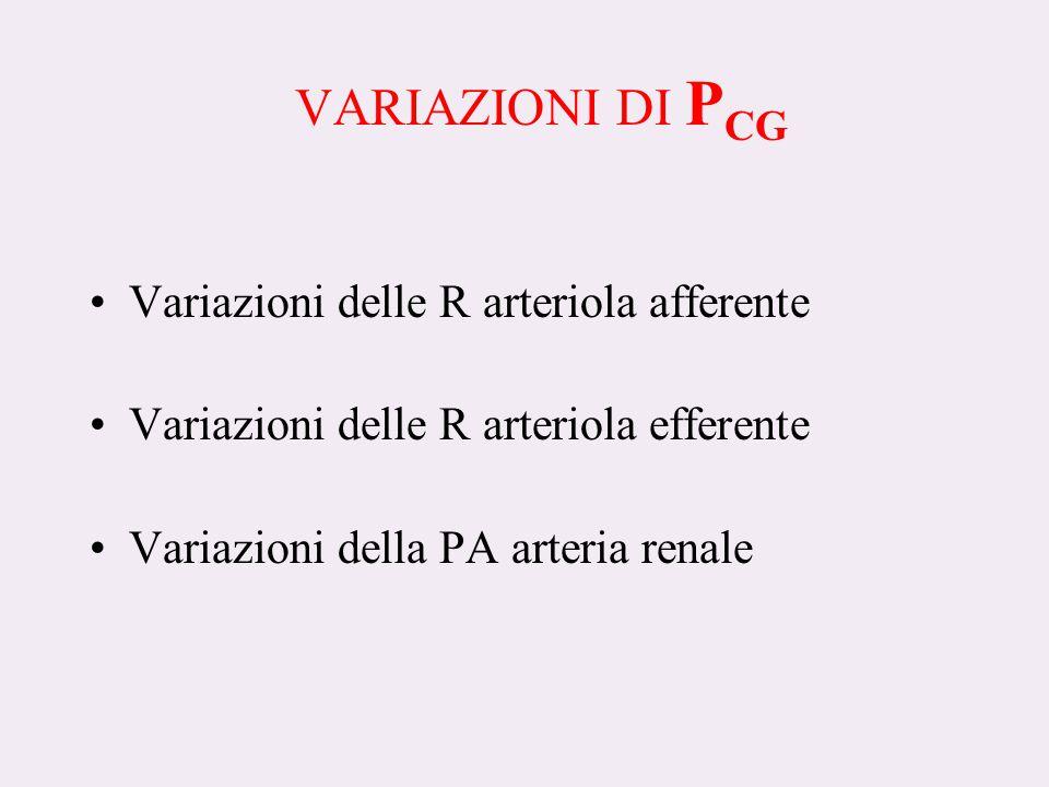 VARIAZIONI DI P CG Variazioni delle R arteriola afferente Variazioni delle R arteriola efferente Variazioni della PA arteria renale