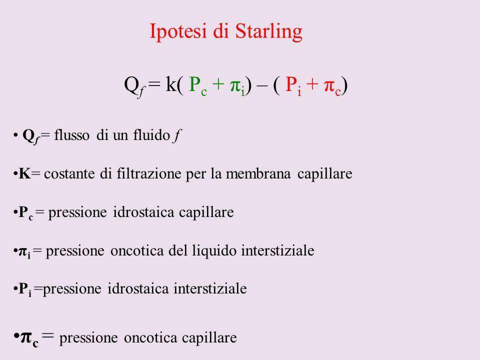 Ipotesi di Starling Q f = k( P c + π i ) – ( P i + π c ) Q f = flusso di un fluido f K= costante di filtrazione per la membrana capillare P c = pressi