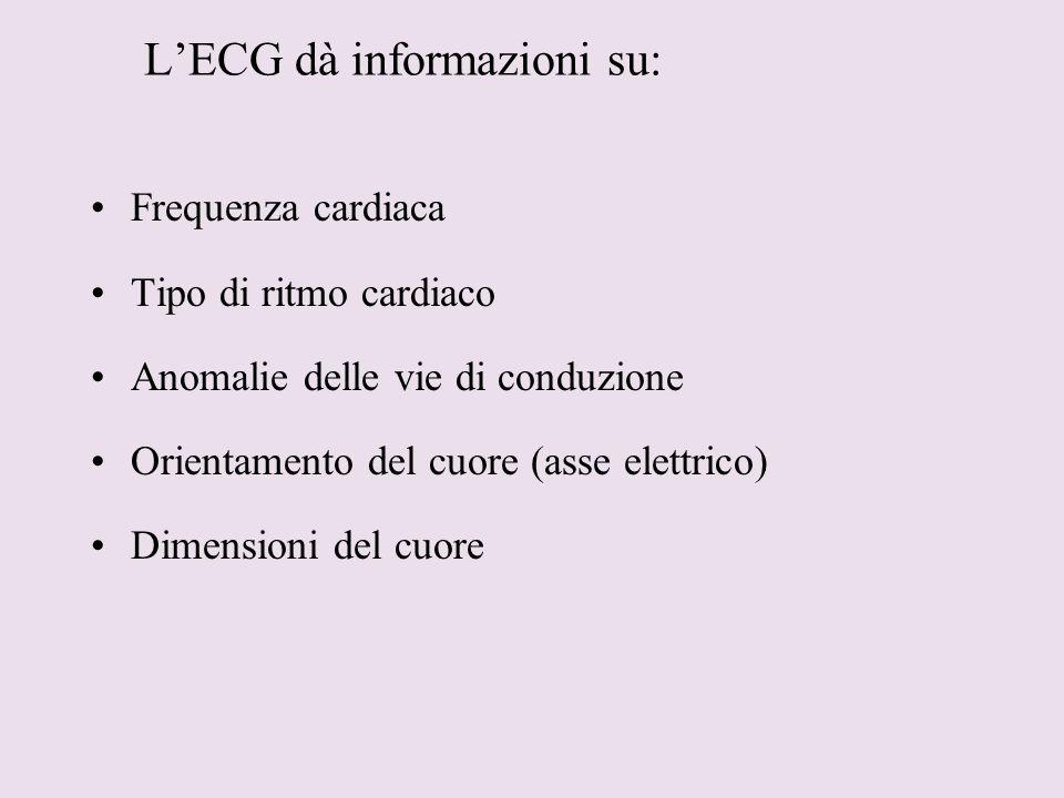 L'ECG dà informazioni su: Frequenza cardiaca Tipo di ritmo cardiaco Anomalie delle vie di conduzione Orientamento del cuore (asse elettrico) Dimension