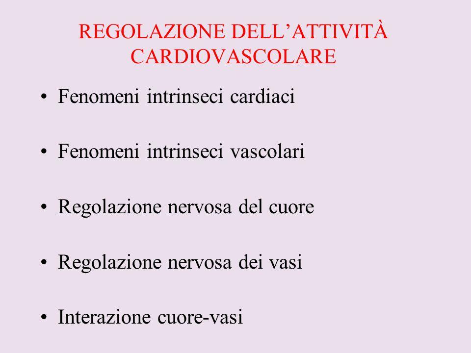 REGOLAZIONE DELL'ATTIVITÀ CARDIOVASCOLARE Fenomeni intrinseci cardiaci Fenomeni intrinseci vascolari Regolazione nervosa del cuore Regolazione nervosa