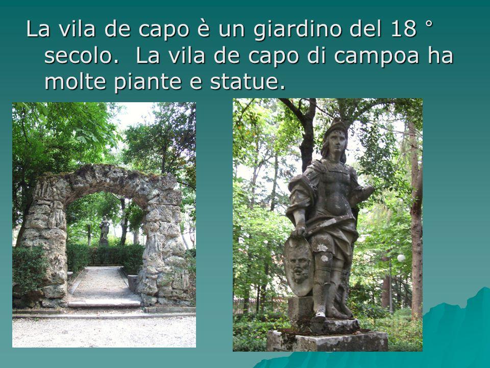 La vila de capo è un giardino del 18 ° secolo. La vila de capo di campoa ha molte piante e statue.