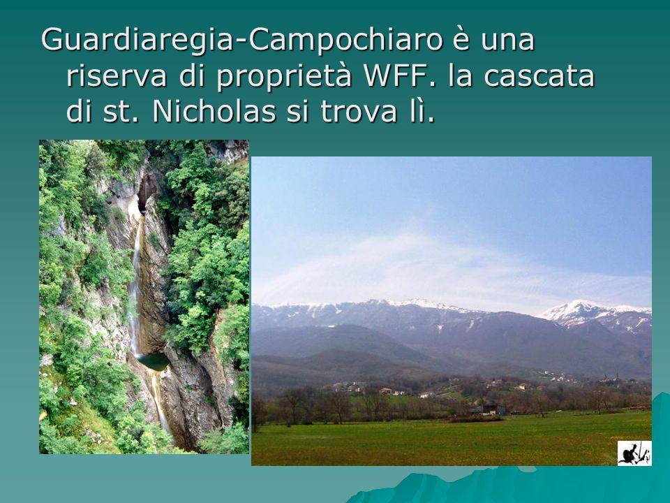 Guardiaregia-Campochiaro è una riserva di proprietà WFF. la cascata di st. Nicholas si trova lì.