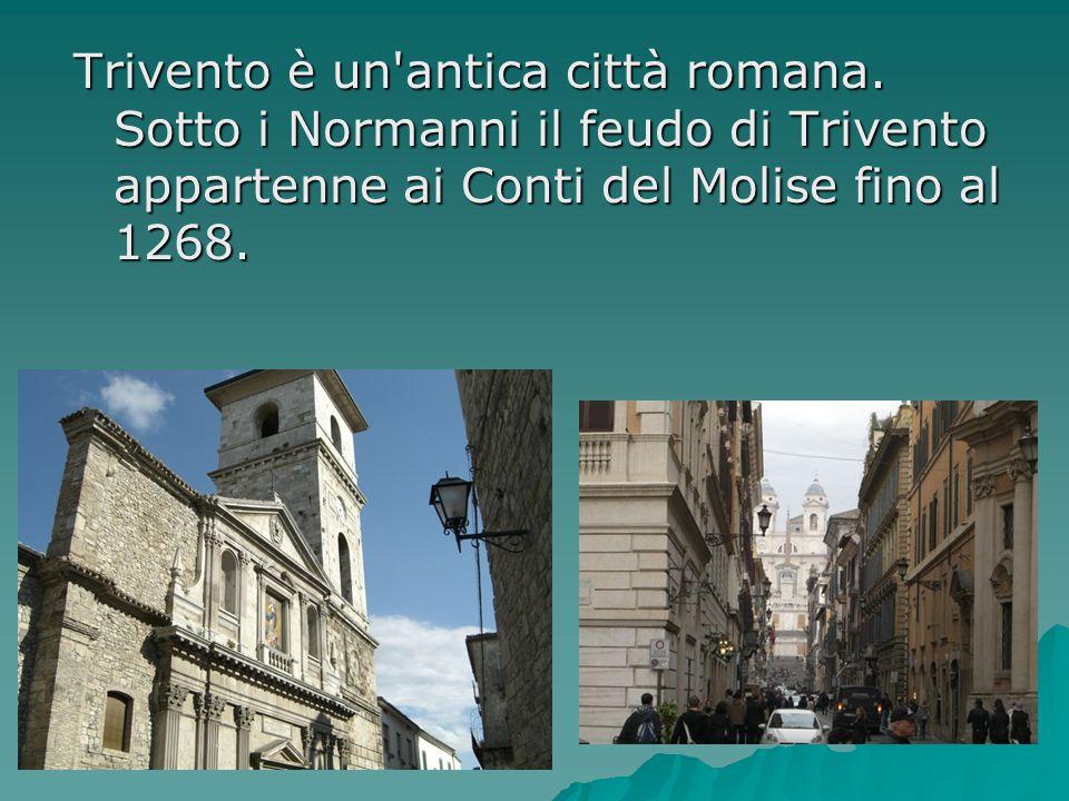 Trivento è un'antica città romana. Sotto i Normanni il feudo di Trivento appartenne ai Conti del Molise fino al 1268.