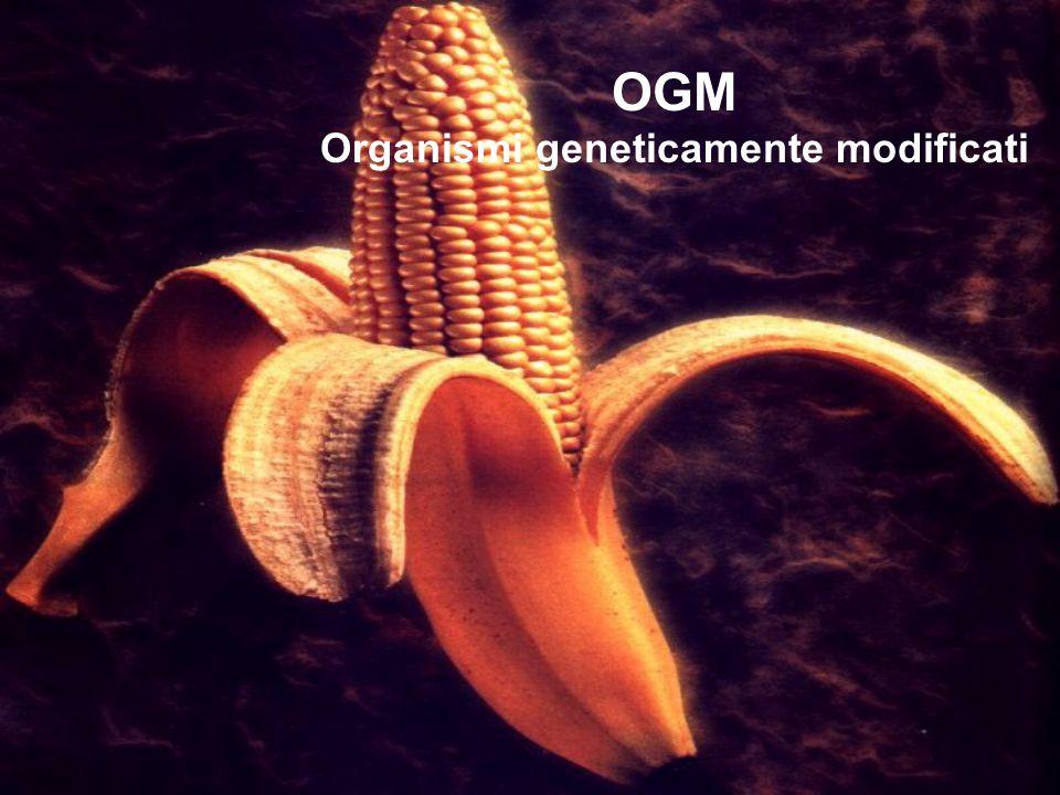 Partiamo dall'a b c..Cosa significa OGM. Organismo Geneticamente Modificato Cos'è un OGM.