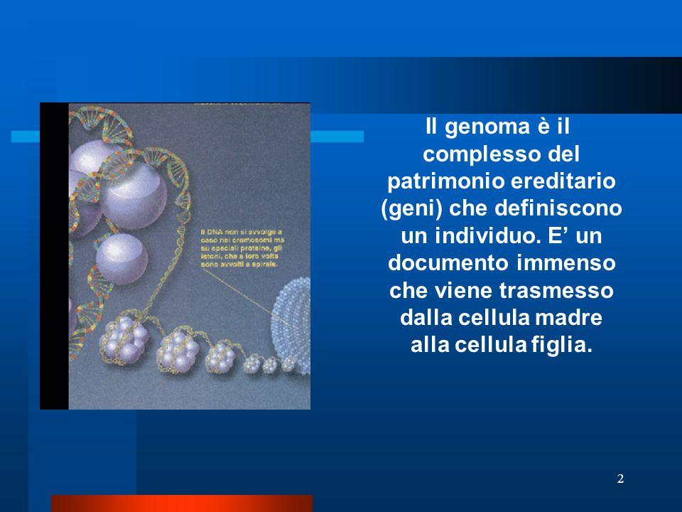 2 Il genoma è il complesso del patrimonio ereditario (geni) che definiscono un individuo. E' un documento immenso che viene trasmesso dalla cellula ma