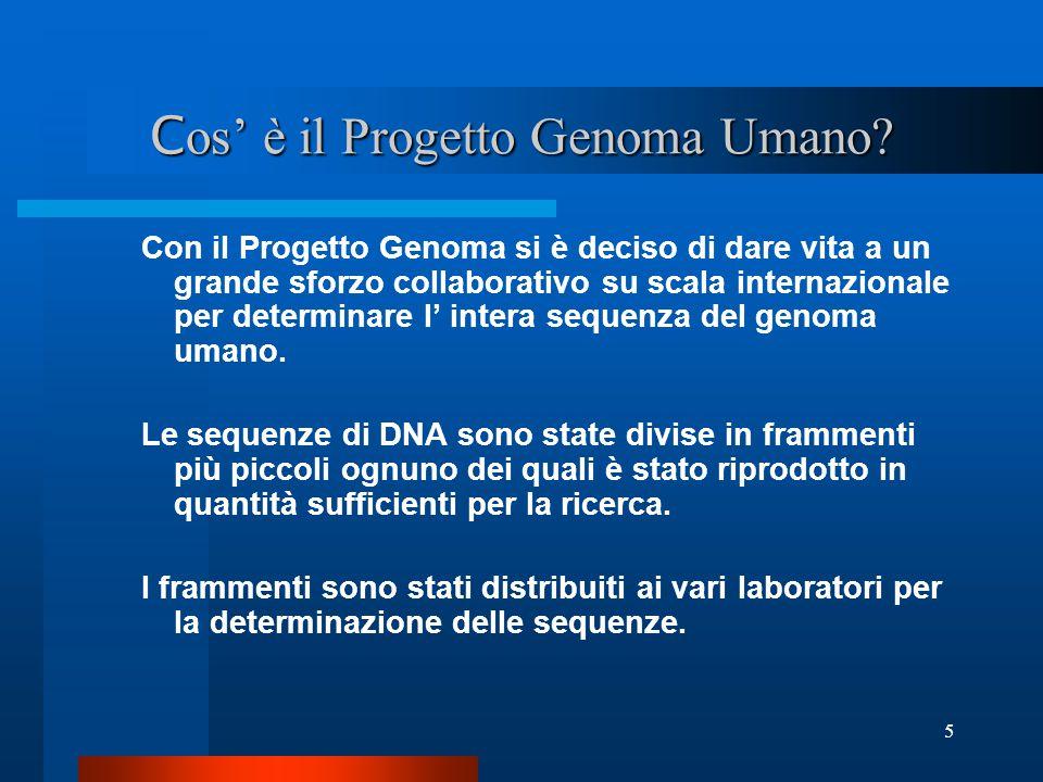 5 C os' è il Progetto Genoma Umano? Con il Progetto Genoma si è deciso di dare vita a un grande sforzo collaborativo su scala internazionale per deter