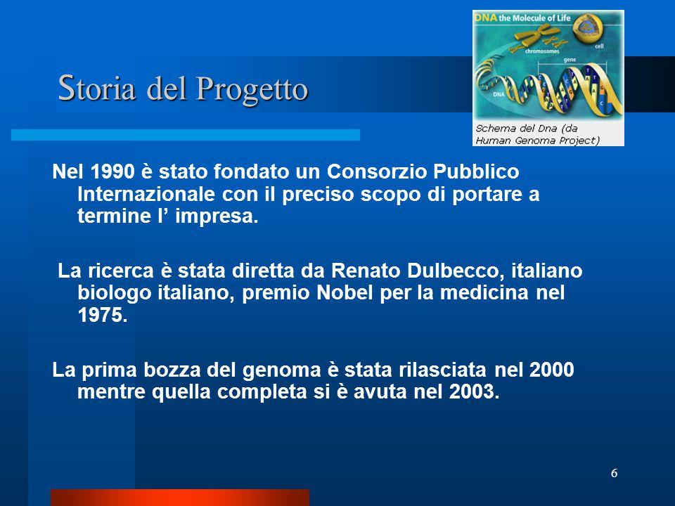 6 S toria del Progetto Nel 1990 è stato fondato un Consorzio Pubblico Internazionale con il preciso scopo di portare a termine l' impresa. La ricerca
