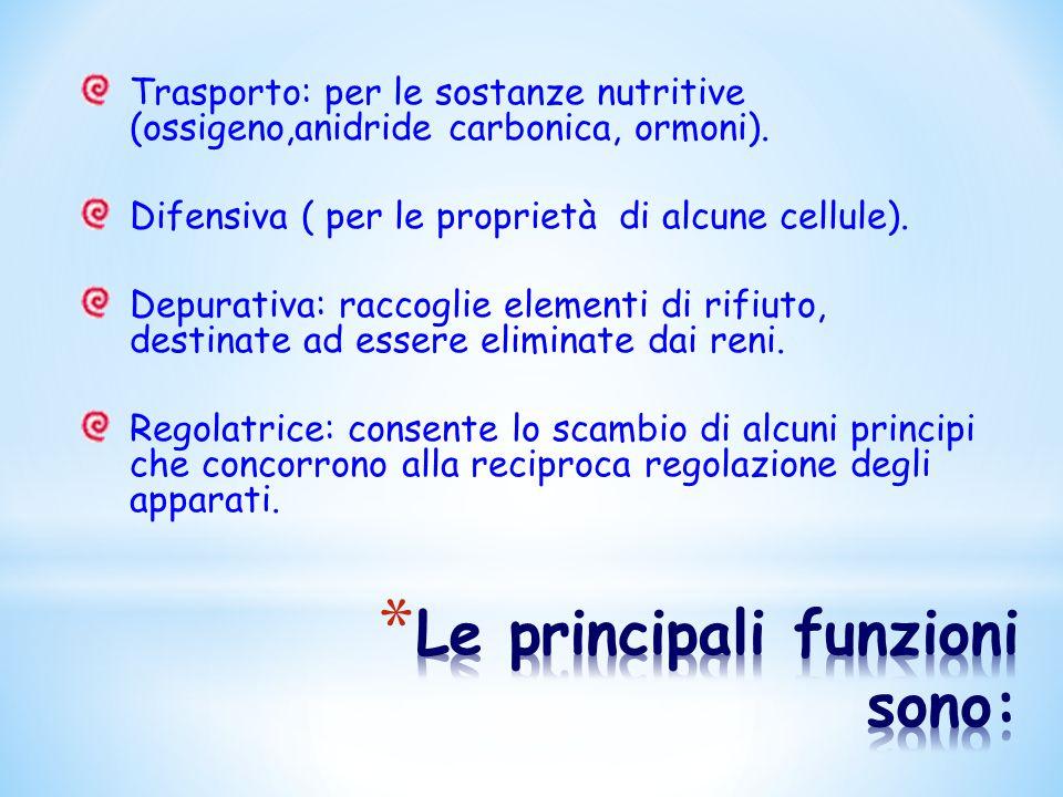 Trasporto: per le sostanze nutritive (ossigeno,anidride carbonica, ormoni). Difensiva ( per le proprietà di alcune cellule). Depurativa: raccoglie ele