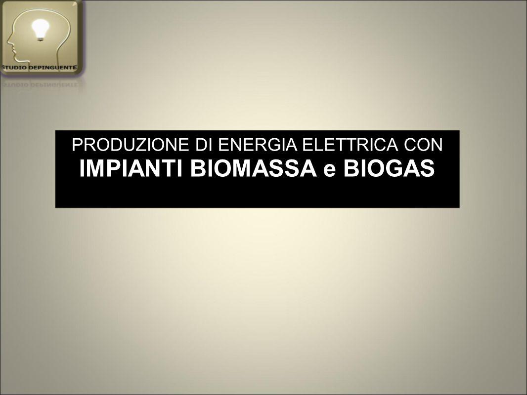 PRODUZIONE DI ENERGIA ELETTRICA CON IMPIANTI BIOMASSA e BIOGAS