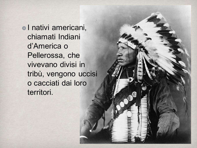 I nativi americani, chiamati Indiani d'America o Pellerossa, che vivevano divisi in tribù, vengono uccisi o cacciati dai loro territori.