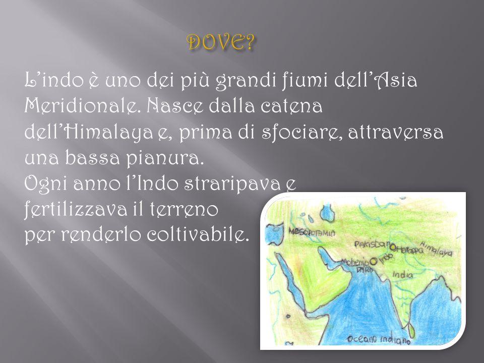 La civiltà dell'Indo si sviluppò nel 2500 a.C.Le città più famose furono Mohenjo – Daro e Harappa.