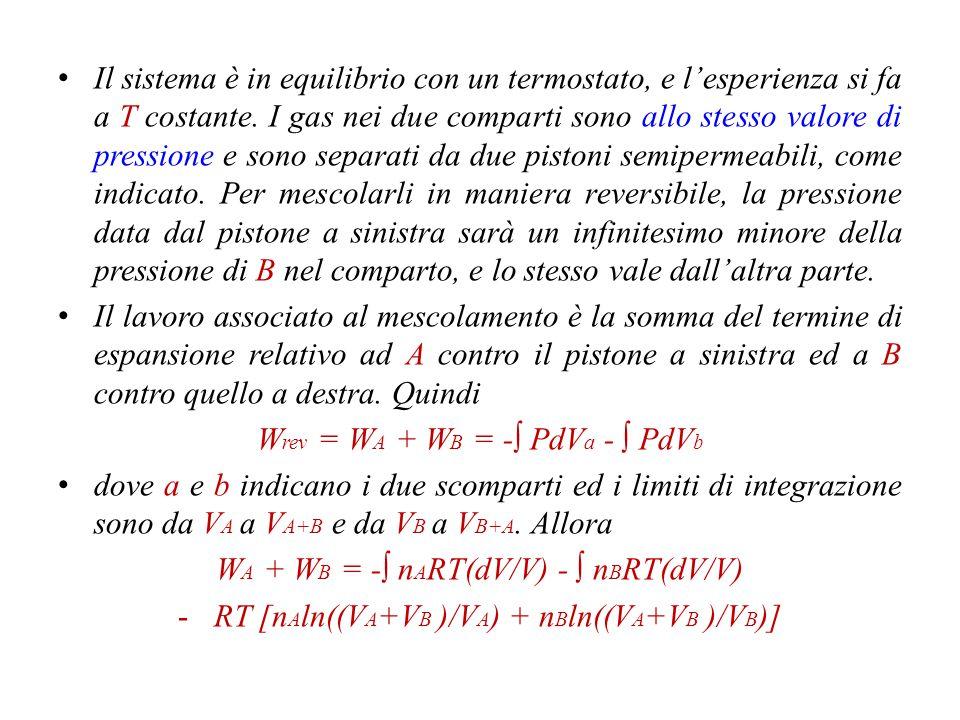 P = P A P' = P B n B, P, V B n A, P, V A Membrana permeabile a B.Membrana permeabile ad A.