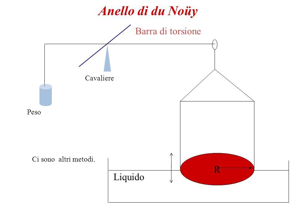 Come fare.Costruisco un oggetto che permetta di aumentare, di poco, la superficie di un liquido.