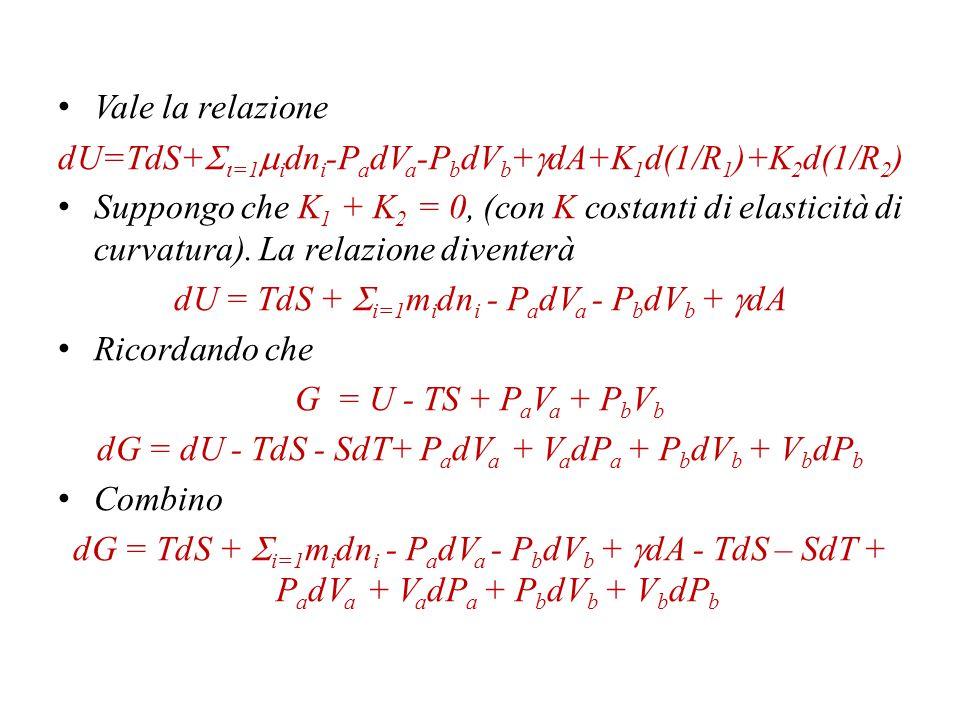 Ho un numero i di componenti, che si distribuiscono tra le varie fasi (liquido, vapore e superficie).