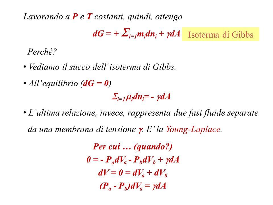 Vale la relazione dU=TdS+   =1  i dn i -P a dV a -P b dV b +  dA+K 1 d(1/R 1 )+K 2 d(1/R 2 ) Suppongo che K 1 + K 2 = 0, (con K costanti di elasticità di curvatura).