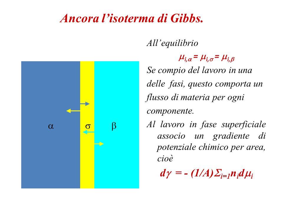 Sviluppiamo l'isoterma di Gibbs.