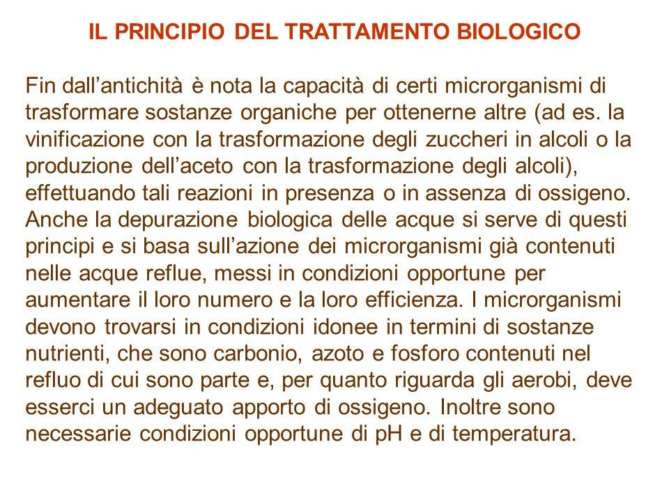 IL PRINCIPIO DEL TRATTAMENTO BIOLOGICO Fin dall'antichità è nota la capacità di certi microrganismi di trasformare sostanze organiche per ottenerne altre (ad es.