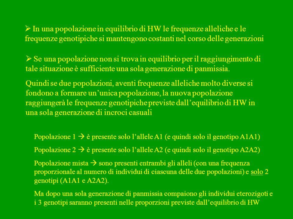  In una popolazione in equilibrio di HW le frequenze alleliche e le frequenze genotipiche si mantengono costanti nel corso delle generazioni  Se una