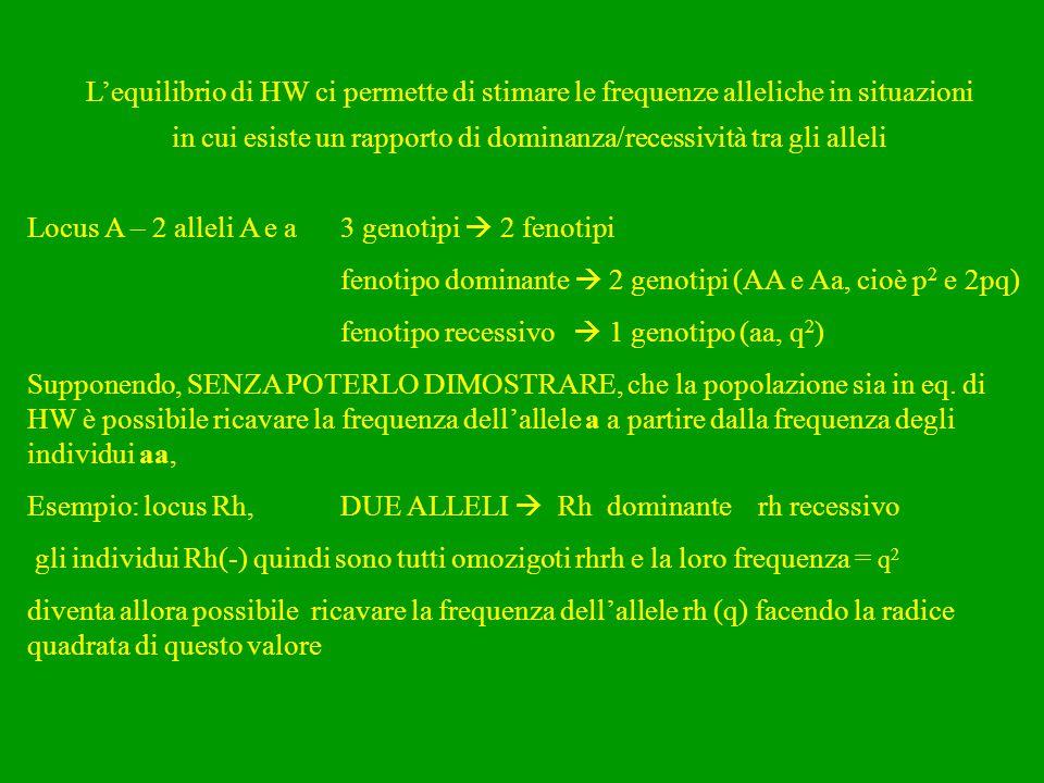 L'equilibrio di HW ci permette di stimare le frequenze alleliche in situazioni in cui esiste un rapporto di dominanza/recessività tra gli alleli Locus