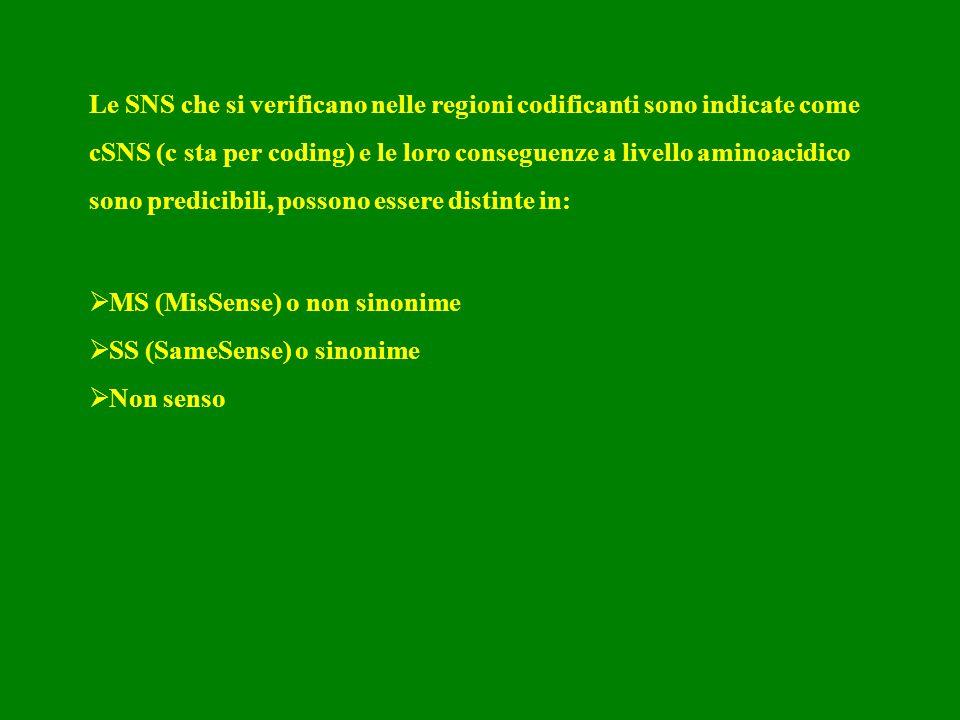 Le SNS che si verificano nelle regioni codificanti sono indicate come cSNS (c sta per coding) e le loro conseguenze a livello aminoacidico sono predic