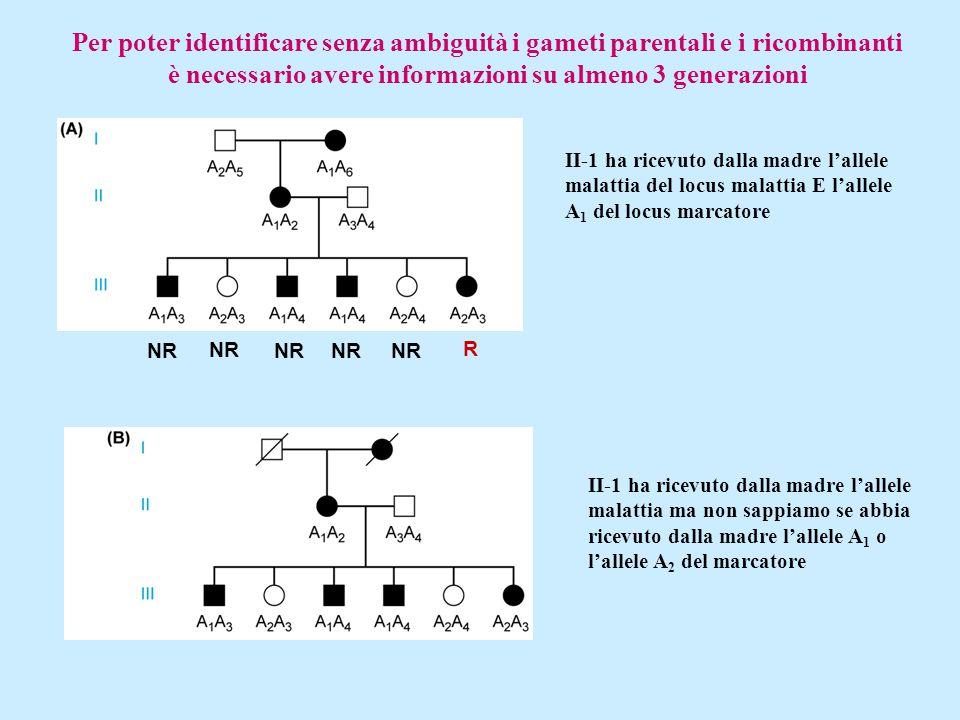 Per poter identificare senza ambiguità i gameti parentali e i ricombinanti è necessario avere informazioni su almeno 3 generazioni NR R II-1 ha ricevu