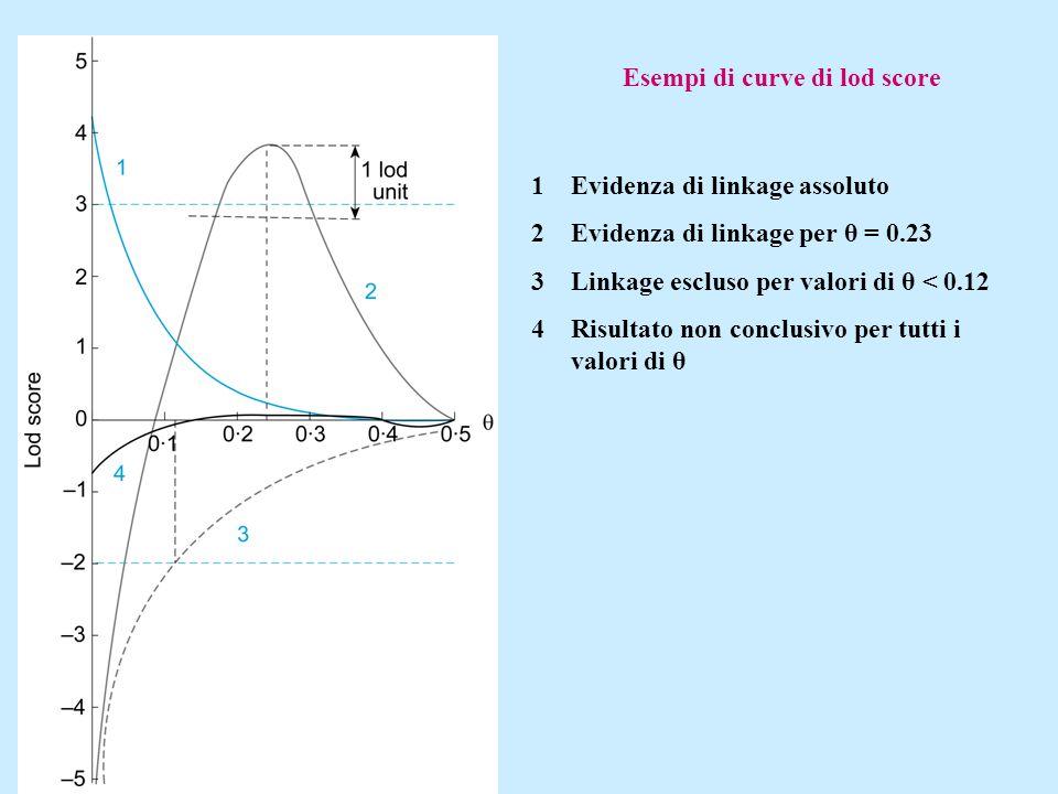 Esempi di curve di lod score 1Evidenza di linkage assoluto 2Evidenza di linkage per θ = 0.23 3Linkage escluso per valori di θ < 0.12 4Risultato non co
