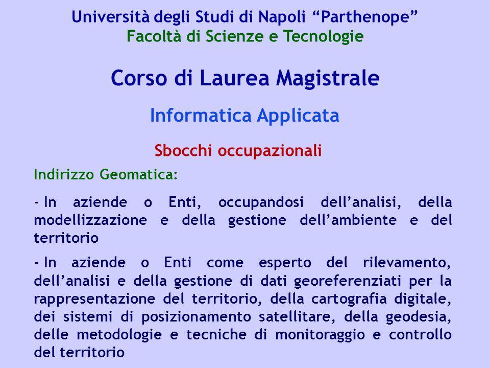 Corso di Laurea Magistrale Informatica Applicata Indirizzo Geomatica: - In aziende o Enti, occupandosi dell'analisi, della modellizzazione e della ges