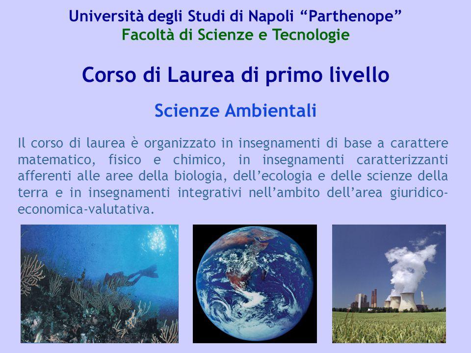 Corso di Laurea di primo livello Il corso di laurea è organizzato in insegnamenti di base a carattere matematico, fisico e chimico, in insegnamenti ca