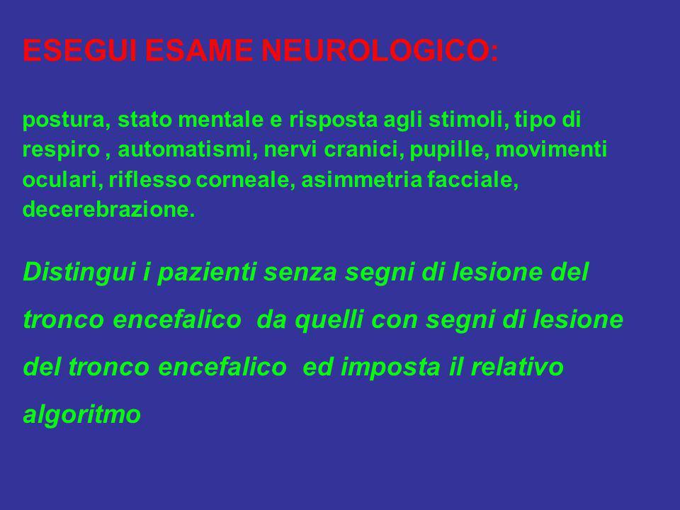 ESEGUI ESAME NEUROLOGICO: postura, stato mentale e risposta agli stimoli, tipo di respiro, automatismi, nervi cranici, pupille, movimenti oculari, rif
