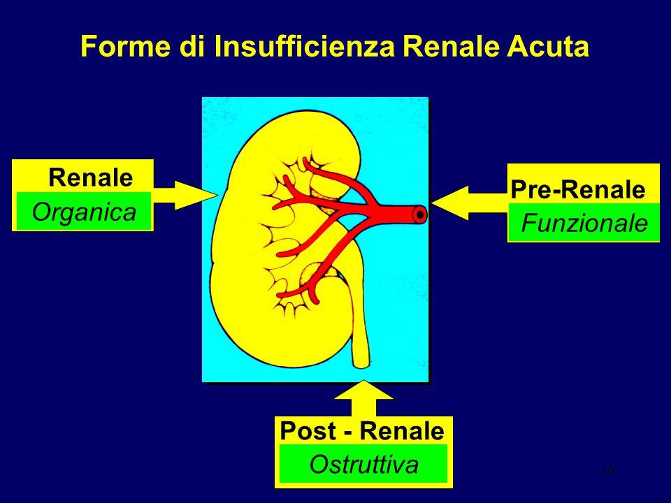 10 Forme di Insufficienza Renale Acuta Pre-Renale Funzionale Renale Organica Post - Renale Ostruttiva