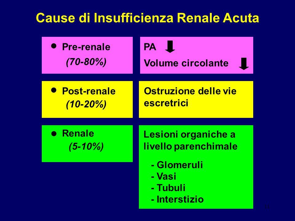 11 Cause di Insufficienza Renale Acuta Pre-renale PA Volume circolante (70-80%) Post-renale (10-20%) Ostruzione delle vie escretrici Renale (5-10%) Le