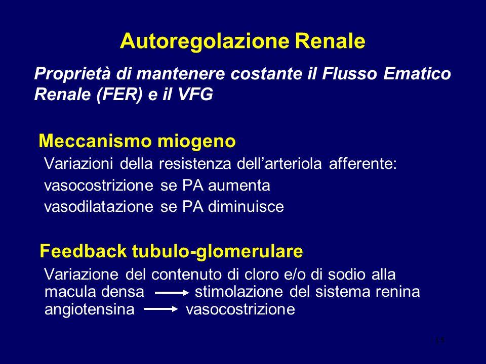 15 Autoregolazione Renale Meccanismo miogeno Variazioni della resistenza dell'arteriola afferente: vasocostrizione se PA aumenta vasodilatazione se PA